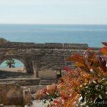 Tarragona en 8 esenciales